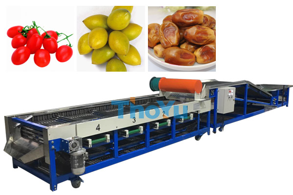 cherry tomato grading machine
