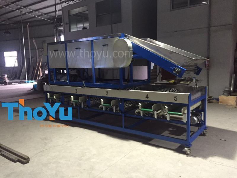 garlic cleaning grading machine shipped to Egypt