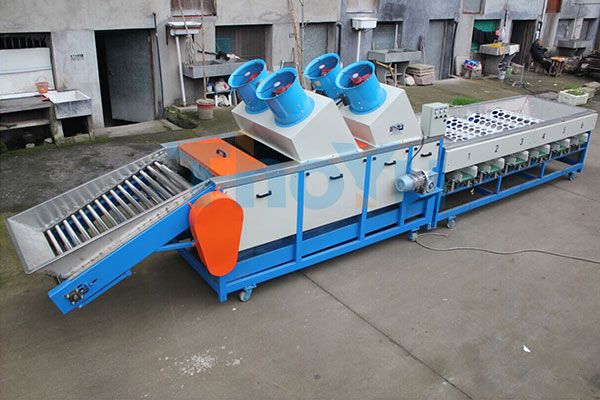 citrus cleaning grading machine