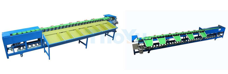 stainless steel material dragon fruit grading machine